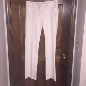 White express columnist dress pants